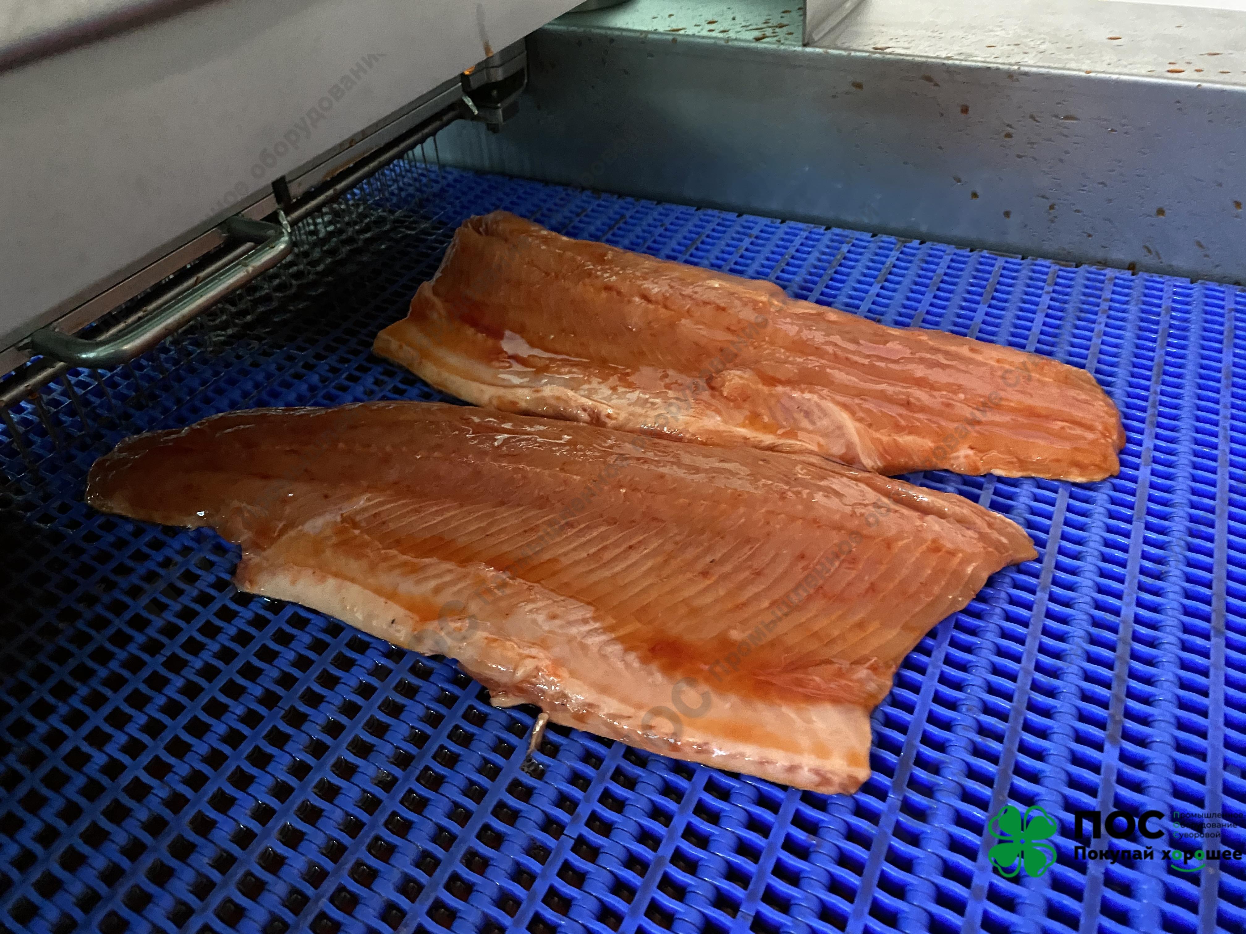 22.04.2020 / Инъектор для рыбы CHAMCO: в 1,5 раза больше прирост массы филе и 2 рабочих вместо 10. Окупаемость за 2 дня?