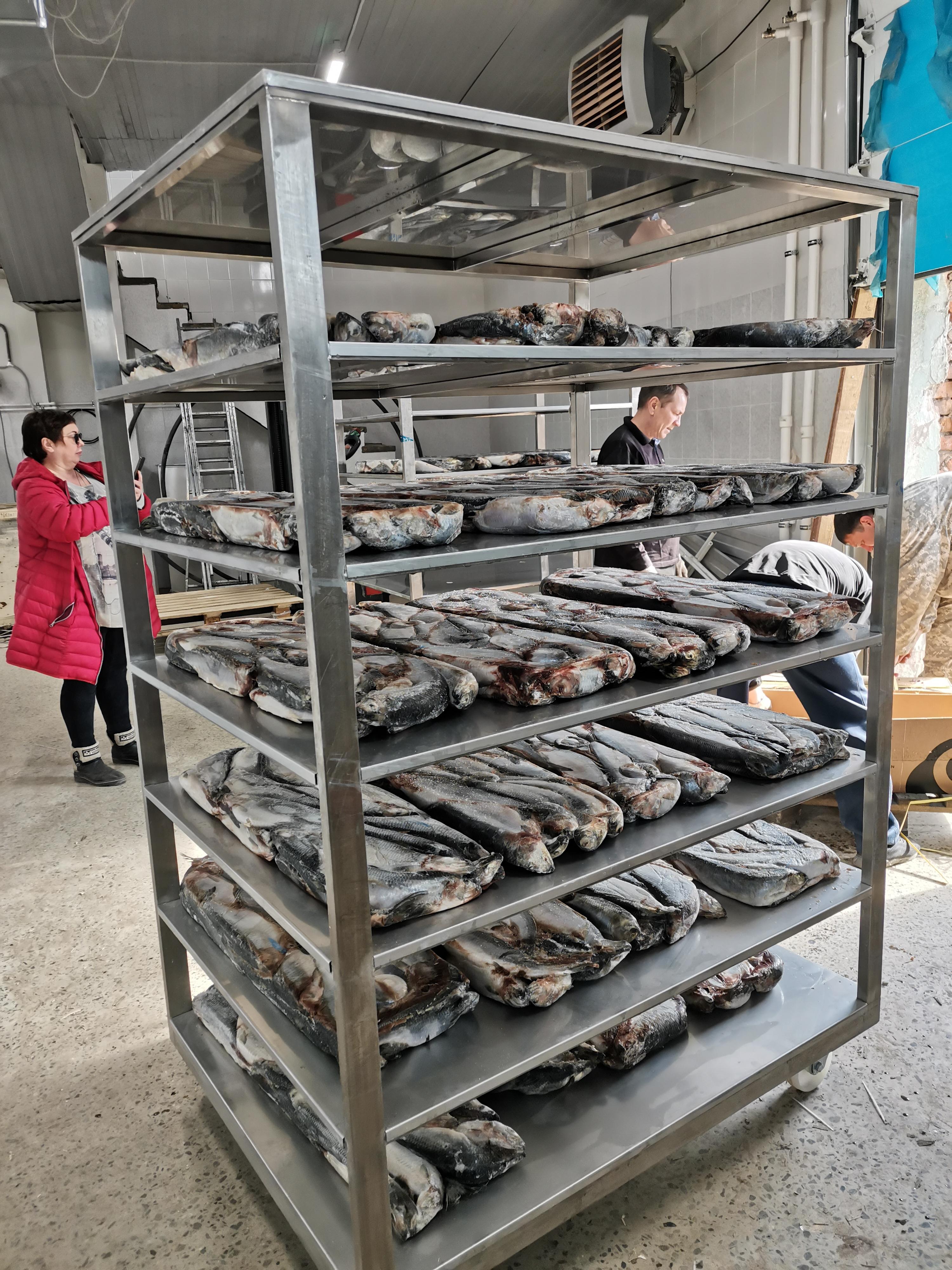 27.04.2021 / На рыбозаводе в Хабаровском крае  запущена камера дефростации рыбы.